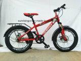 2017 heißes Verkaufs-Fahrrad/Kind-Fahrrad/Kind-Fahrrad 20 Zoll mit Scheibenbremse Sr-Kb139