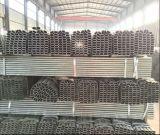 Venta de fábrica de galvanizado en caliente de 60x30mm, 80x40mm tubo soldada de acero Oval