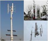 Comitati solari del generatore di turbina del vento di potere di energia rinnovabile di H 20kw piccoli ibridi