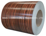 Qualität vorgestrichener PPGI u. Zink-Aluminiumstahl Coil/PPGI/PPGL