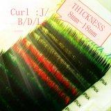 Prolonge de cil de son de jeux de couleur de la prolonge 2 de cil de couleur d'Ombre de beauté de Lili double