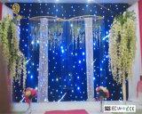 결혼식 단계 배경막 전시를 위한 세륨을%s 가진 2*3m LED 별 피복 별 커튼