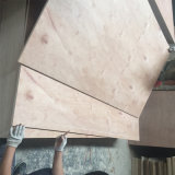 Pegamento del grado WBP de la madera contrachapada BB/CC del cedro de lápiz