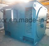 Special asíncrono trifásico de Ysq de la serie del motor para las minas