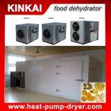 Os damascos/ Ananás/ máquina de secagem de frutas e vegetais/ Garrafa de fonte de ar