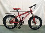 2018 Vendas quente aluguer/Crianças aluguer de bicicletas para crianças/20 polegada com travão de disco Sr-Kb139