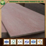 El mejor precio clasificó una madera contrachapada comercial para el piso