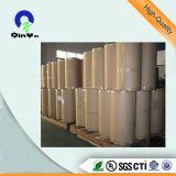 A formação de vácuo filme de PVC transparente para embalagem