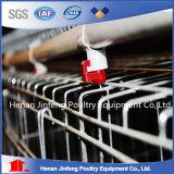 20176 cages de couche galvanisées par vente chaude pour des fermes avicoles