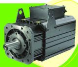 Permanent Magnet AC Servo Motor en Servo Driver