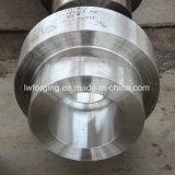 Freies Schmieden-Hersteller-Gehäuse und Gefäß-Kopf verwendet auf Oil&Gas Industrien