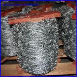 電流を通されたブドウ園の有刺鉄線の熱い販売