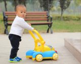 Rosafarbenes und blaues Baby-Wanderer mit Musik/musikalischem Baby-Wanderer