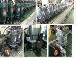 Pompen Met duikvermogen van het Water van Dayuan de Elektrische qdx5-10-0.37f 0.37kw/0.5HP