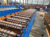 Porta do obturador do rolo de aço da cor que dá forma à maquinaria