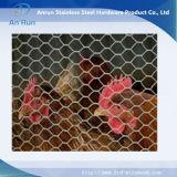 Sechseckige Draht-Filetarbeit für das Anheben des Huhns