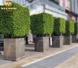 Estante modificado para requisitos particulares profesional del crisol de flor del metal del acero inoxidable de Keenhai