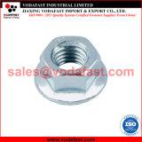 La norme DIN 6923 l'écrou à embase hexagonale en acier inoxydable