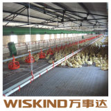 Il pollame chiaro prefabbricato della struttura d'acciaio di basso costo alloggia