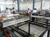 Máquina de impressão Flatbed automática da tela (SPT)