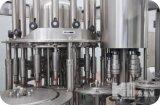 Completare la linea di produzione in bottiglia della spremuta/strumentazione di riempimento