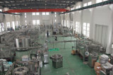 Zhangjiagang-Stadt-neue Technologie-Abfall-Salz-Wasseraufbereitungsanlage für RO-System
