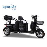 Fahrzeug mit drei Rädern/elektrisches Dreirad/Roller/Fahrrad/elektrisches Motorrad/Motorrad/elektrisches Fahrrad