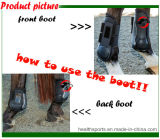 Cheval Hind Bottines couches de protection