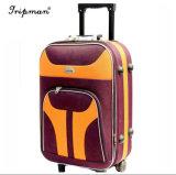 Il sacchetto poco costoso di corsa dei bagagli fuori del carrello del ferro imposta la cassa dei bagagli
