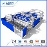 Hengyin Schwein-landwirtschaftliche Maschine-werfender Rahmen für Verkauf