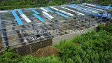 Struttura d'acciaio di alta qualità prefabbricata di basso costo per il magazzino