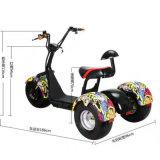 Triciclo elettrico 2018 del carico di certificazione del EEC con la baracca per Handicapped