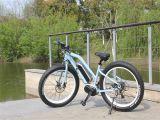 Pneu chaud 2016 Vente de matières grasses e des vélos pour mesdames avec le milieu de moteur de traction
