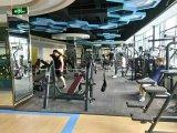 New Gym Equipment Adductor/Inner Thigh Tz-6014/Strength Trainer /Hot Sale Machine