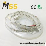 60 LEDs/M 및 단 하나 줄을%s 가진 유연한 LED Ruban 빛 2835
