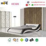 حديثة مزدوجة جلد سرير مع [لد] ضوء ([هك305])