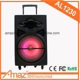 Spitzenverkaufenlaufkatze-Lautsprecher mit Qualität