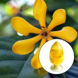 Pigment jaune Gardenia Gardenia Extrait de couleur en poudre