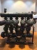 Tipo sistema de H de Lanscape urbano 4 '' de Filration del agua de Anto