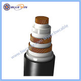 Cabo concêntricos Cu. XLPE/Cu/PVC IEC60502-1 600/1000V