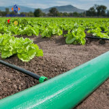 L'agriculture Heavy Duty flexible en PVC flexible d'eau de l'irrigation