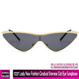 11257 Lady nouvelle mode chat siamois graduelle des lunettes de soleil de l'oeil