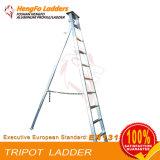 Ladder van het Lassen van de Driehoek van 3.3 Meter de Enige Staaf Omgekeerde Agronomische