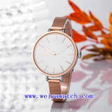 La conception personnalisée de regarder les montres occasionnels (WY-17026A)