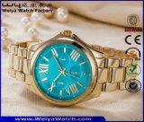 Montre-bracelet occasionnelle de dames de mode d'acier inoxydable d'ODM (WY-P17005B)