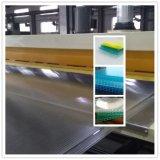 着色されたパソコンのMultiwall空シート/屋根ふきシートの生産ライン