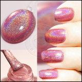 Pigmento holográfico do Glitter, fornecedor do pigmento do prego do Glitter do laser Holo