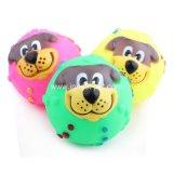 L'animale domestico della sfera del fronte dei cani gioca la sfera di plastica su ordinazione del fronte del cane