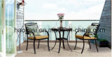 /Rattan ao ar livre/tabela de Chair& da mobília de Polywood da mobília hotel do jardim/Patio/ajustada (HS3025C&HS 6123DT)