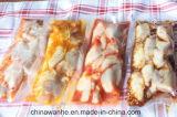 Sellador seco del embalaje del vacío de los pescados de la carne del grano del acero inoxidable